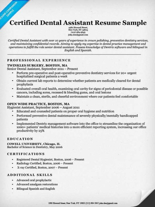Dental Resume Examples  Writing Tips  Resume Companion