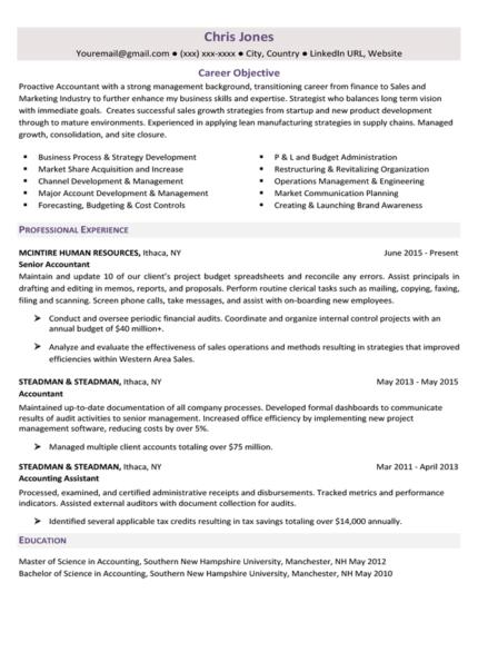 Amethyst Purple Career Change Resume Template