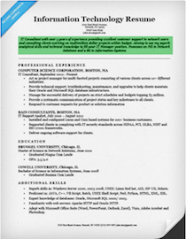 professional resume objective information technology - Resume Objectives For It Professionals