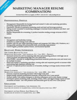 Marketing Manager Resume Sample  It Project Manager Resume Sample