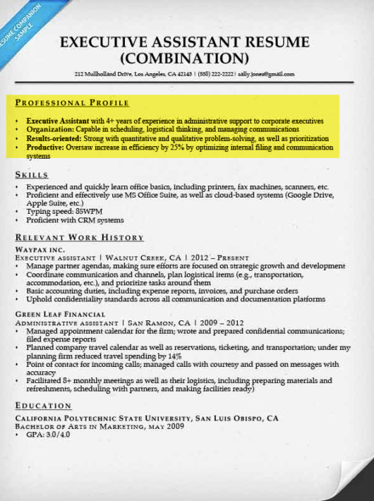 professional examples of resumes