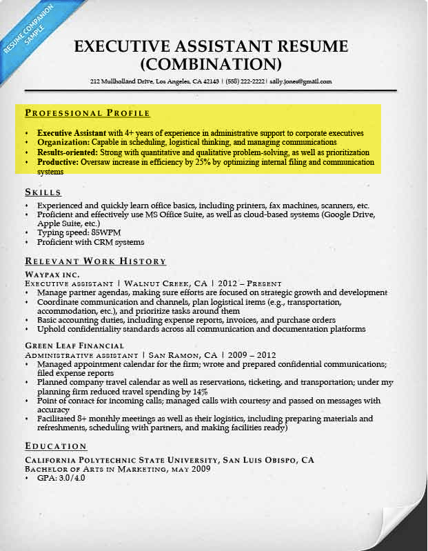 2. Professional (resume) profiles, career objectives and qualifications summaries