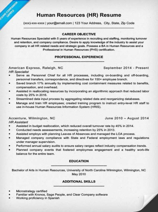 hr human resources resume example