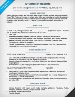 Resume For Internship  Resume For Entry Level