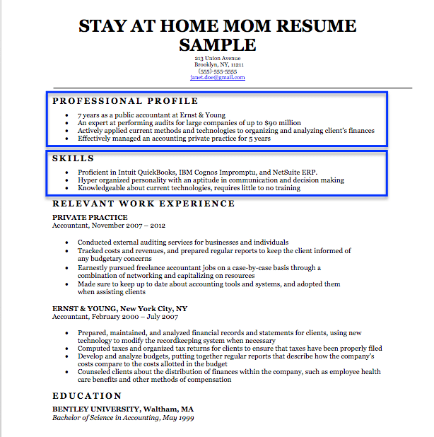 stay at home mom professional profile example - Stay At Home Mom Resume Template