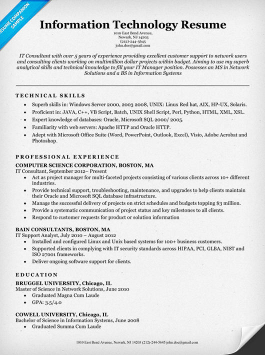 Information Technology It Resume Sle Panion
