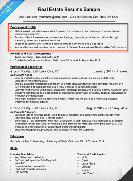Resume Profile Examples Amp Writing Guide Resume Companion