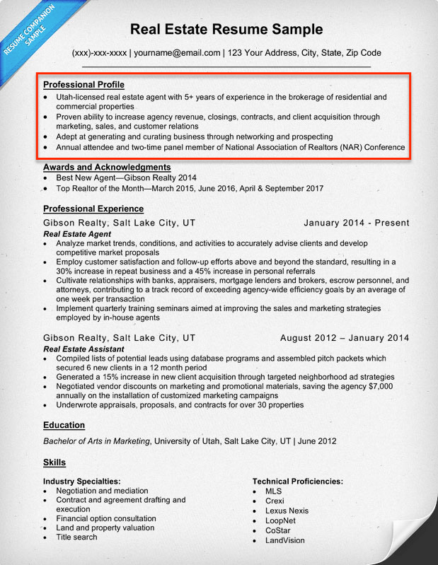 Resume Profile Examples Writing Guide