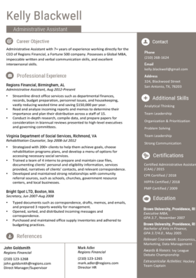 Charcoal Gold Standard Resume Template