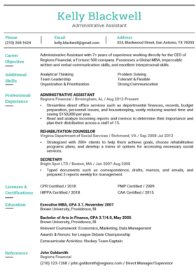 Aquamarine Hybrid Resume Template