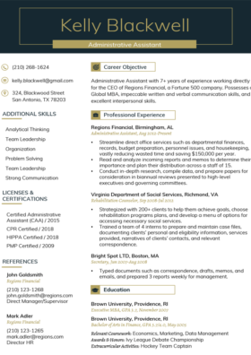 Imperial Gold Professional Resume Template